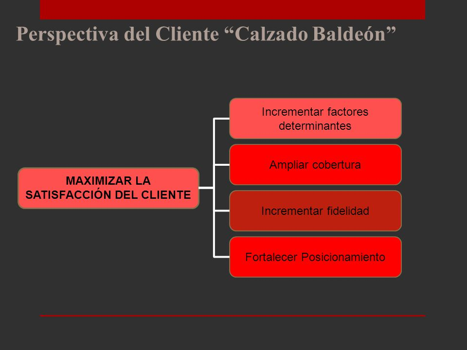 MAXIMIZAR LA SATISFACCIÓN DEL CLIENTE