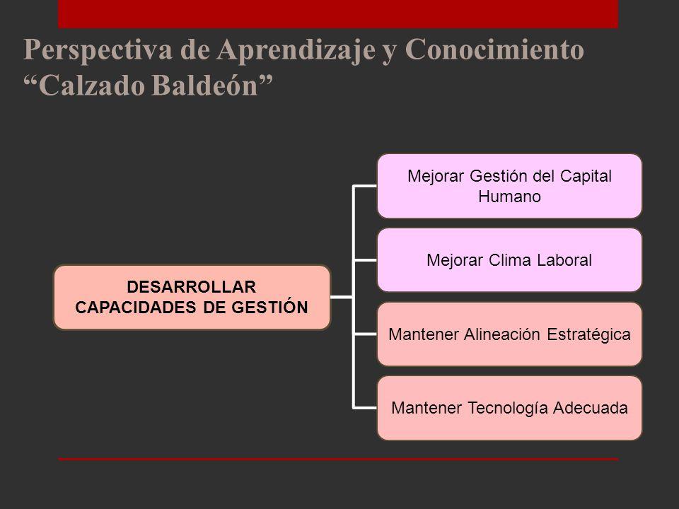DESARROLLAR CAPACIDADES DE GESTIÓN