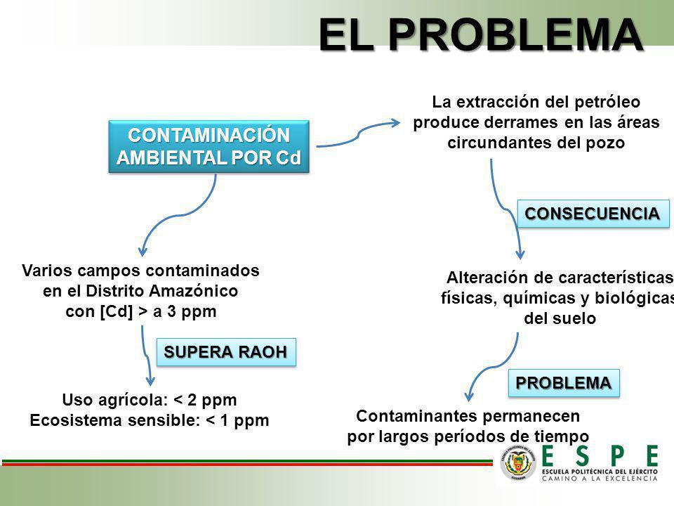 EL PROBLEMA CONTAMINACIÓN AMBIENTAL POR Cd La extracción del petróleo
