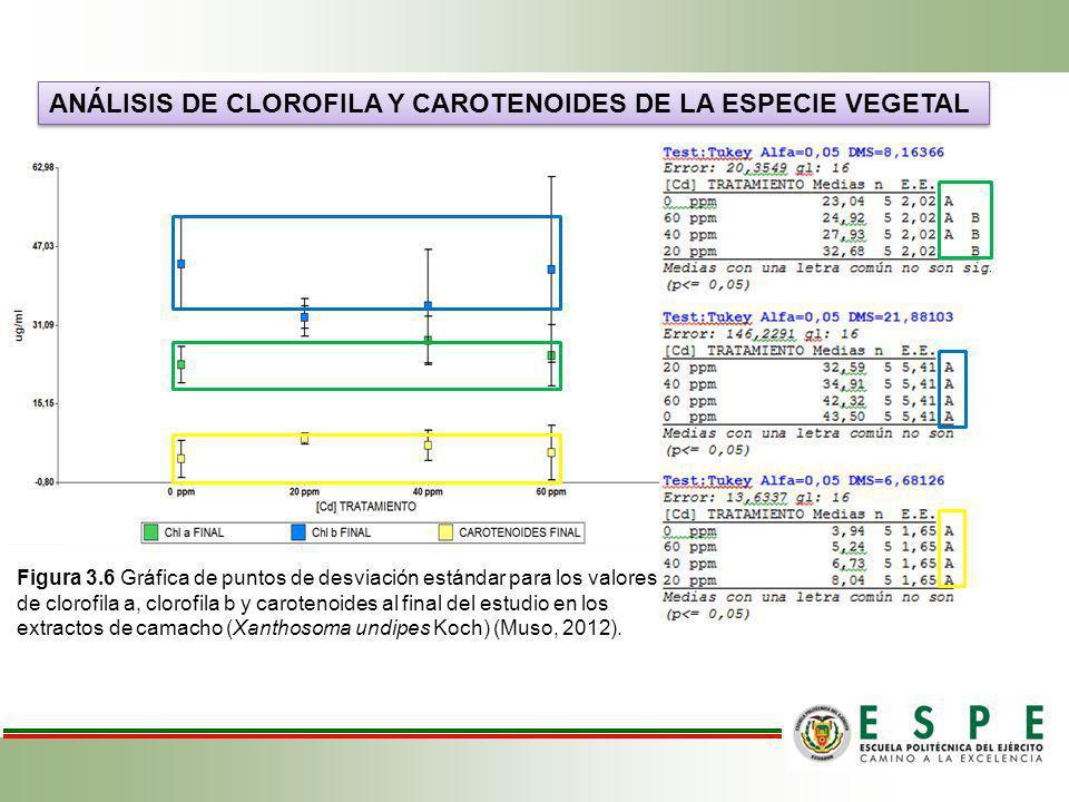 Análisis de clorofila y carotenoides de la especie vegetal