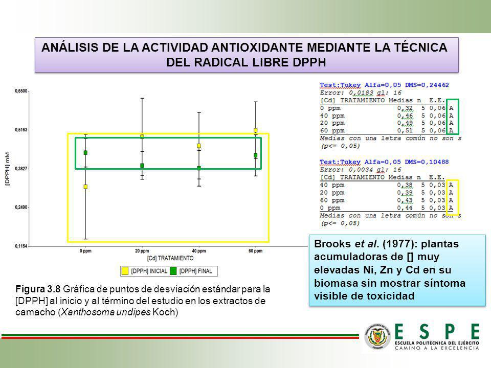 ANÁLISIS DE LA ACTIVIDAD ANTIOXIDANTE MEDIANTE LA TÉCNICA