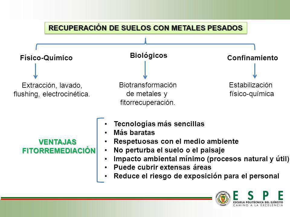 RECUPERACIÓN DE SUELOS CON METALES PESADOS