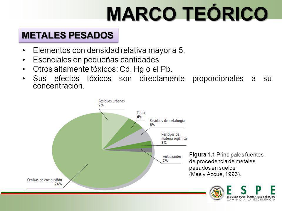 MARCO TEÓRICO METALES PESADOS