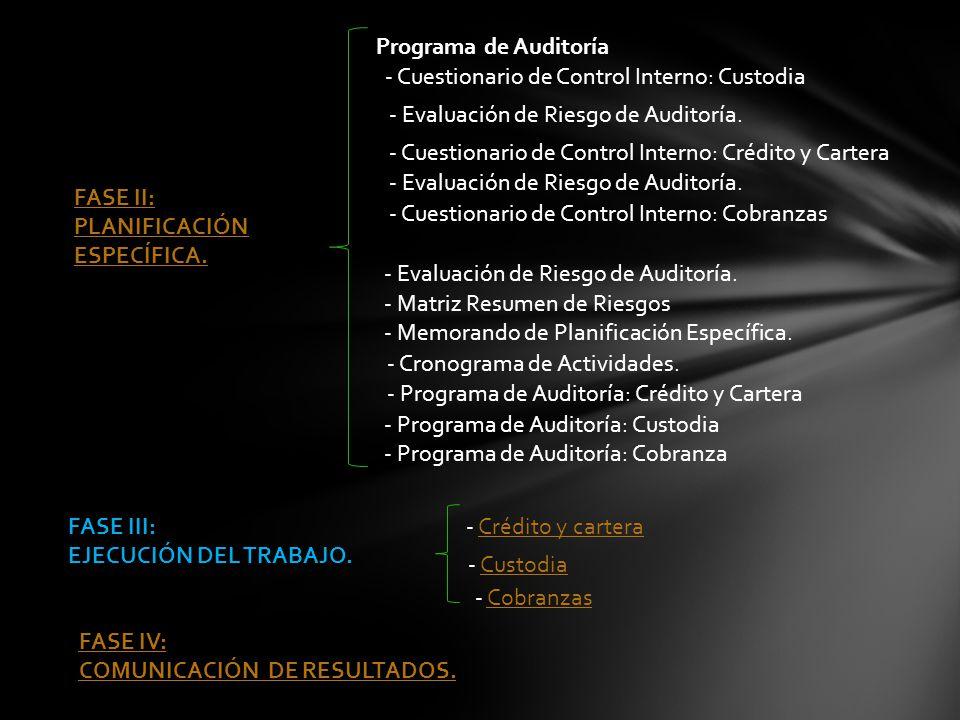 Programa de Auditoría - Cuestionario de Control Interno: Custodia. - Evaluación de Riesgo de Auditoría.