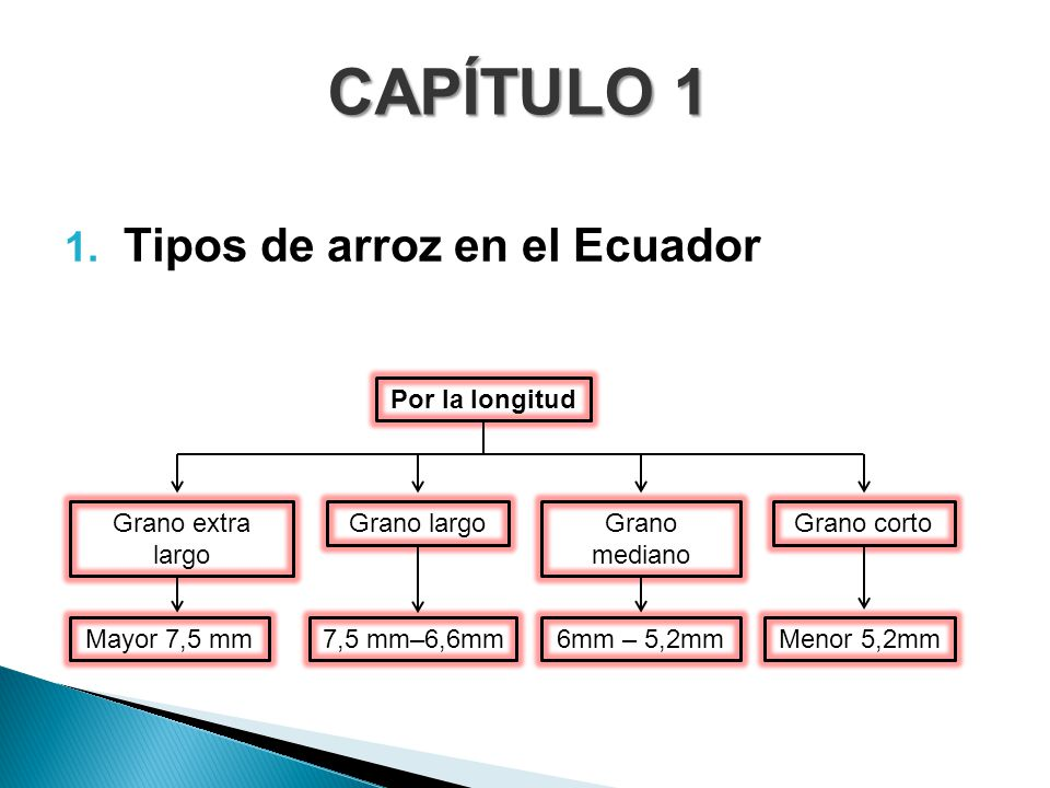 CAPÍTULO 1 Tipos de arroz en el Ecuador Mayor 7,5 mm 7,5 mm–6,6mm
