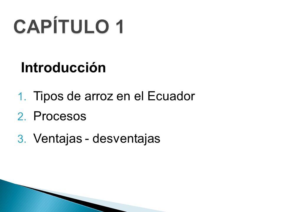 CAPÍTULO 1 Introducción Tipos de arroz en el Ecuador Procesos