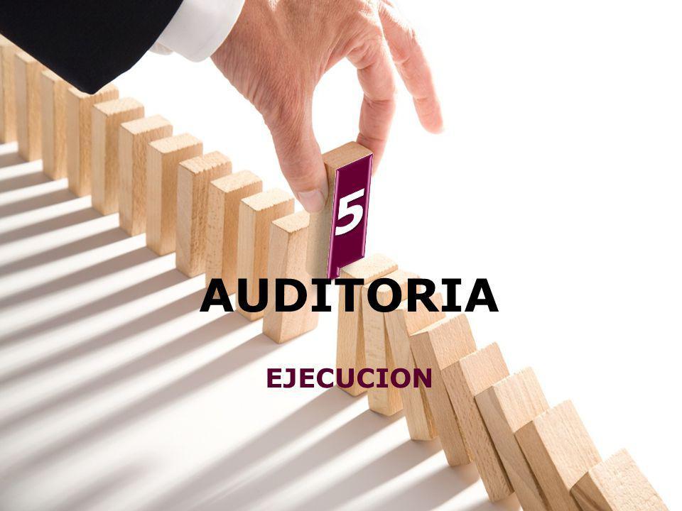 5 AUDITORIA EJECUCION