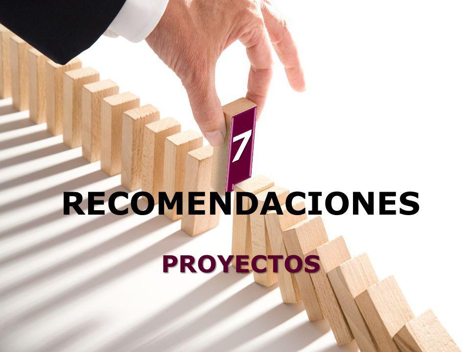 7 RECOMENDACIONES PROYECTOS