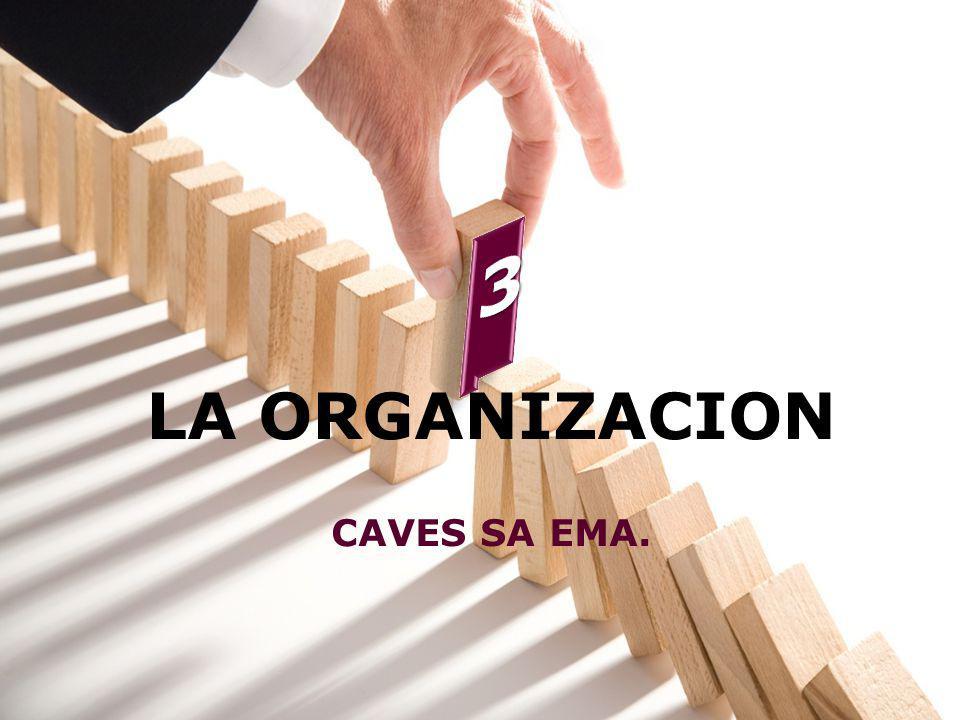 3 LA ORGANIZACION CAVES SA EMA.