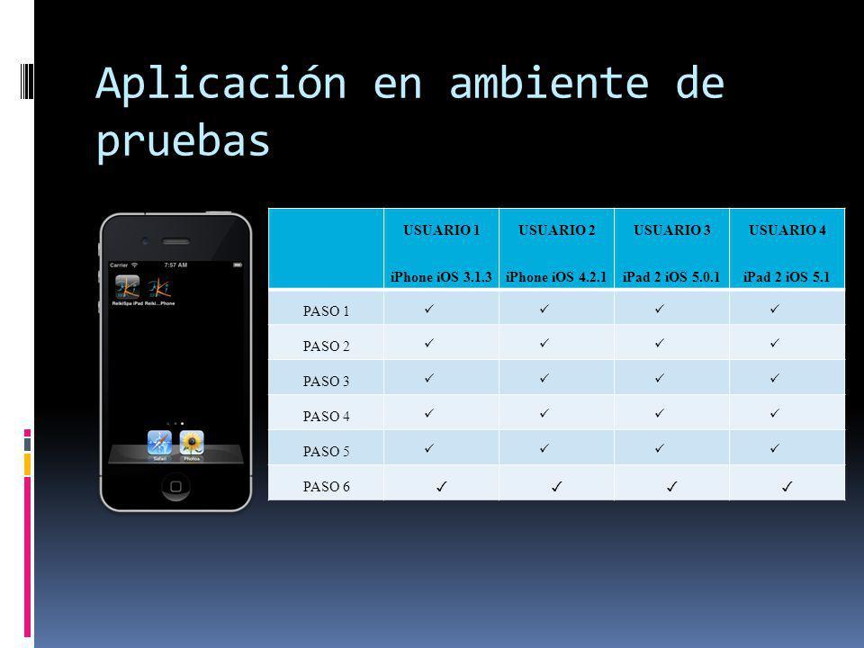 Aplicación en ambiente de pruebas