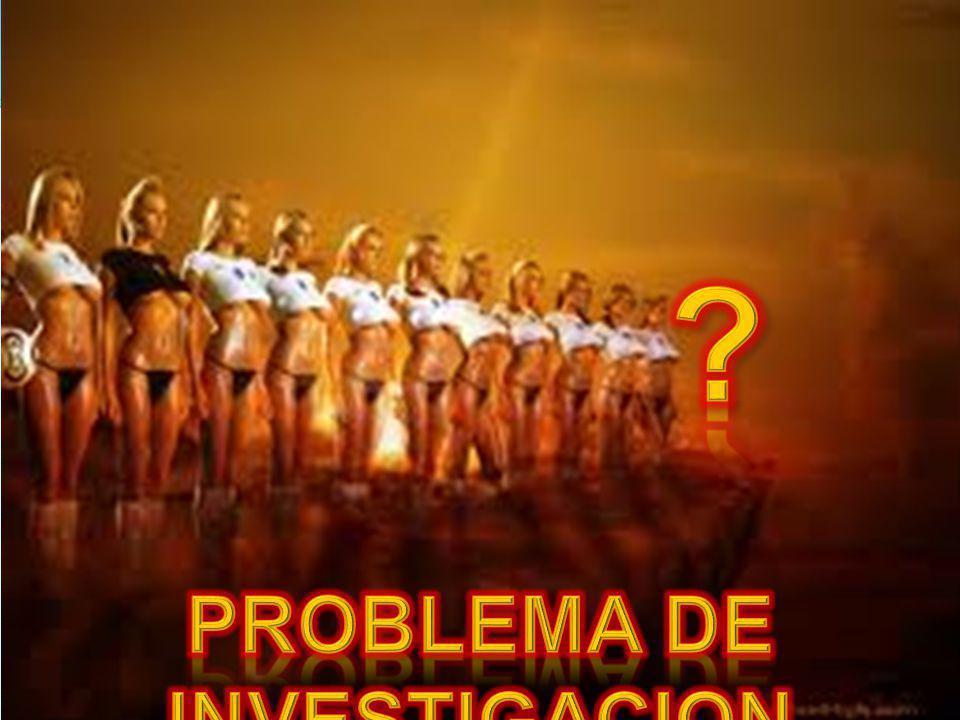PROBLEMA DE INVESTIGACION