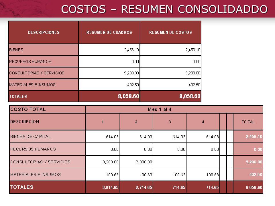 COSTOS – RESUMEN CONSOLIDADDO