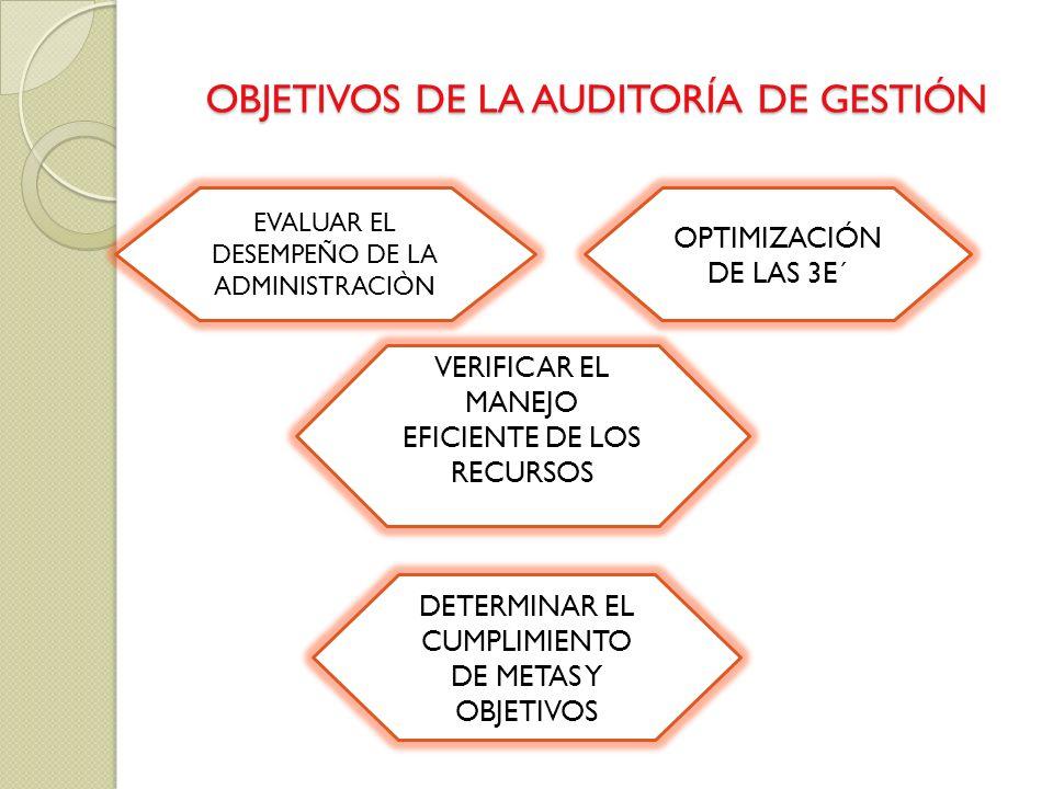 OBJETIVOS DE LA AUDITORÍA DE GESTIÓN