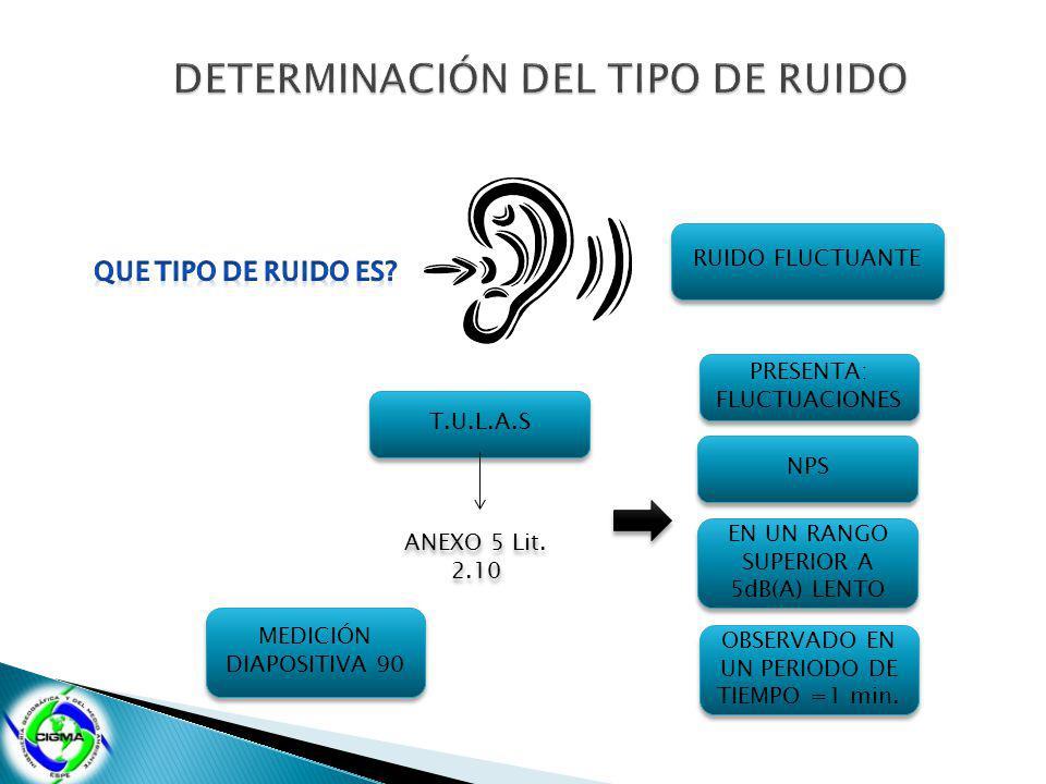 DETERMINACIÓN DEL TIPO DE RUIDO