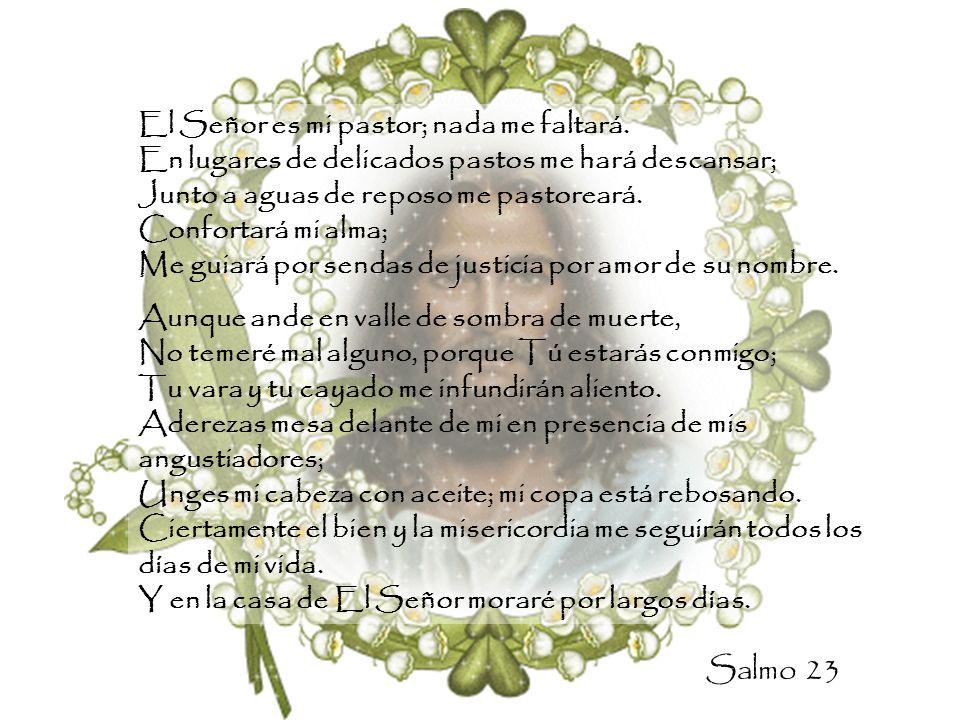El Señor es mi pastor; nada me faltará