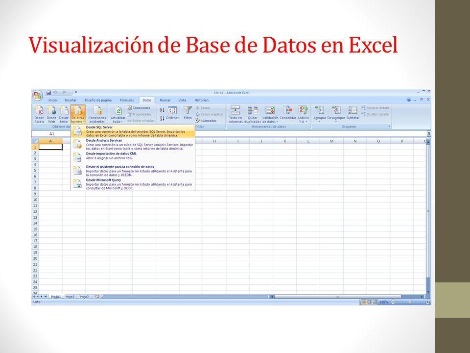 Visualización de Base de Datos en Excel