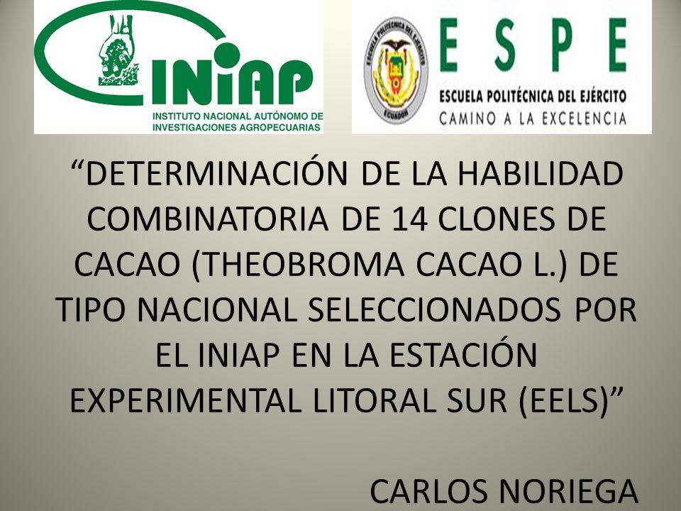 DETERMINACIÓN DE LA HABILIDAD COMBINATORIA DE 14 CLONES DE CACAO (THEOBROMA CACAO L.) DE TIPO NACIONAL SELECCIONADOS POR EL INIAP EN LA ESTACIÓN EXPERIMENTAL LITORAL SUR (EELS) CARLOS NORIEGA
