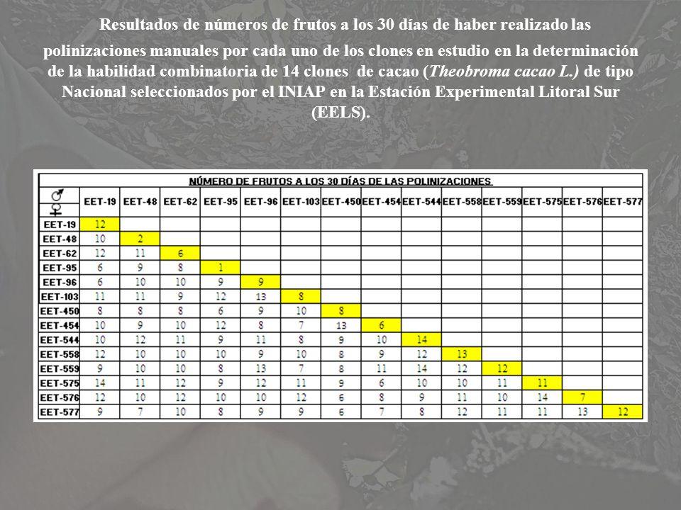 Resultados de números de frutos a los 30 días de haber realizado las polinizaciones manuales por cada uno de los clones en estudio en la determinación de la habilidad combinatoria de 14 clones de cacao (Theobroma cacao L.) de tipo Nacional seleccionados por el INIAP en la Estación Experimental Litoral Sur (EELS).