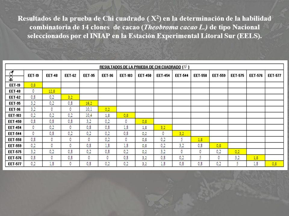 Resultados de la prueba de Chi cuadrado ( X2) en la determinación de la habilidad combinatoria de 14 clones de cacao (Theobroma cacao L.) de tipo Nacional seleccionados por el INIAP en la Estación Experimental Litoral Sur (EELS).