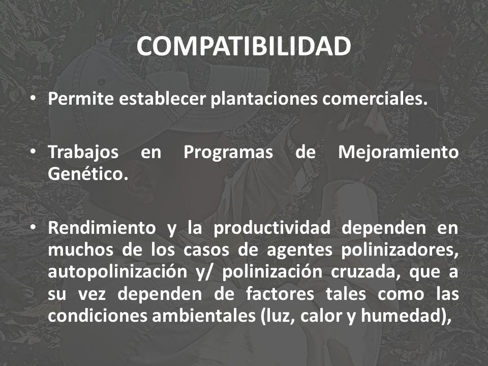 COMPATIBILIDAD Permite establecer plantaciones comerciales.