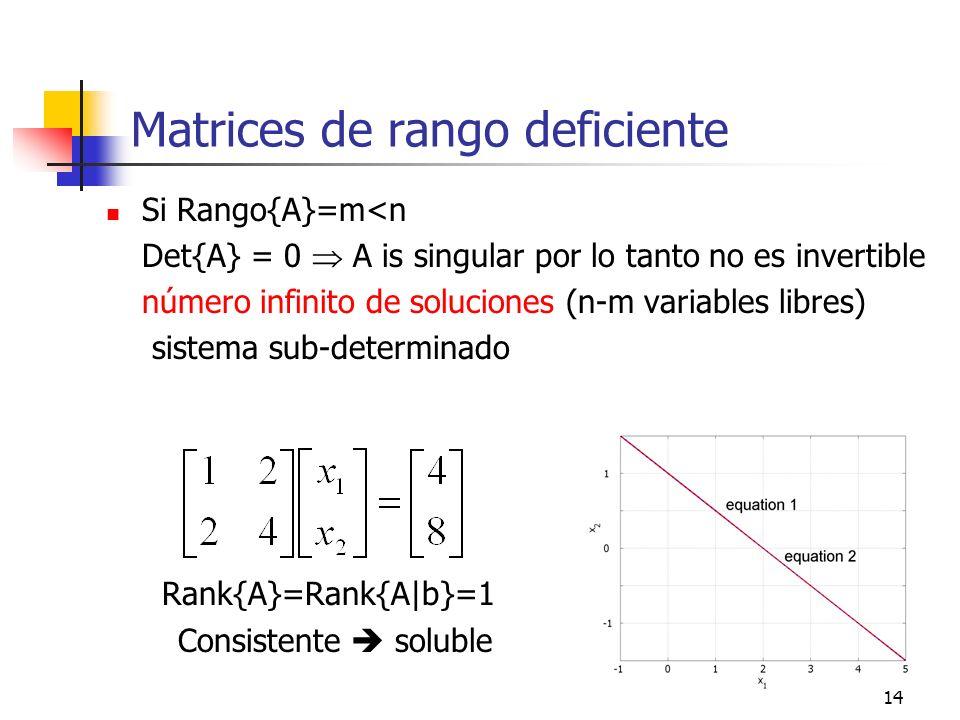 Matrices de rango deficiente