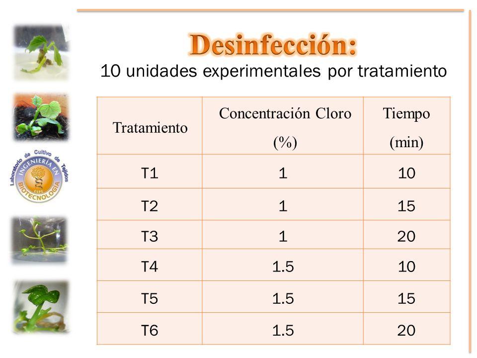 Desinfección: 10 unidades experimentales por tratamiento Tratamiento