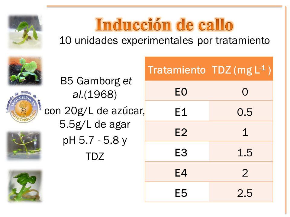 10 unidades experimentales por tratamiento