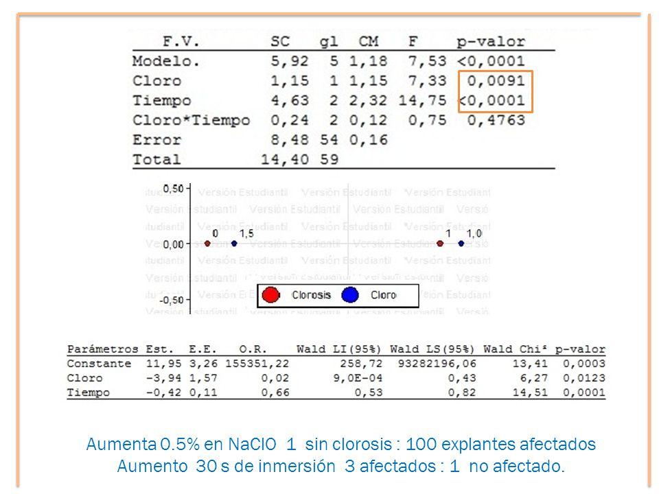 Aumenta 0.5% en NaClO 1 sin clorosis : 100 explantes afectados