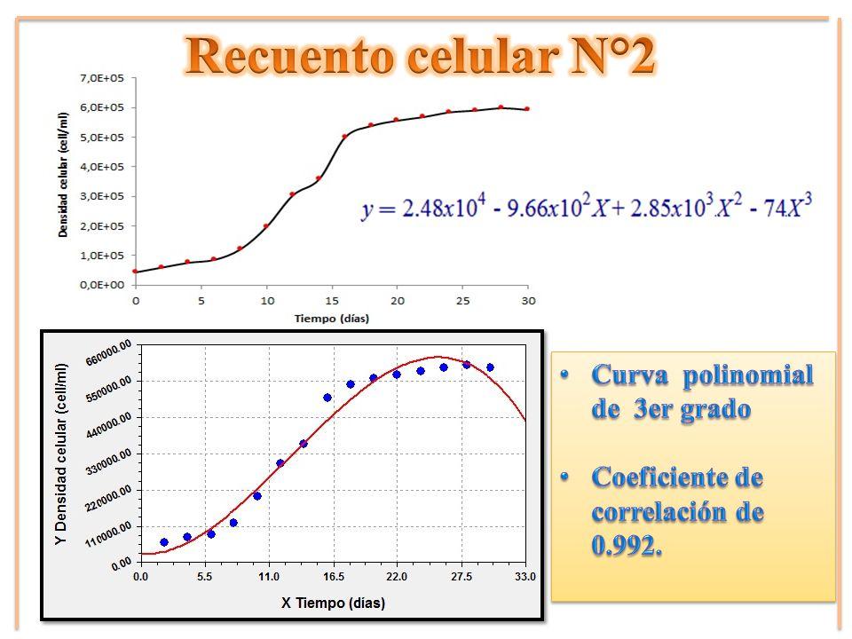 Recuento celular N°2 Curva polinomial de 3er grado