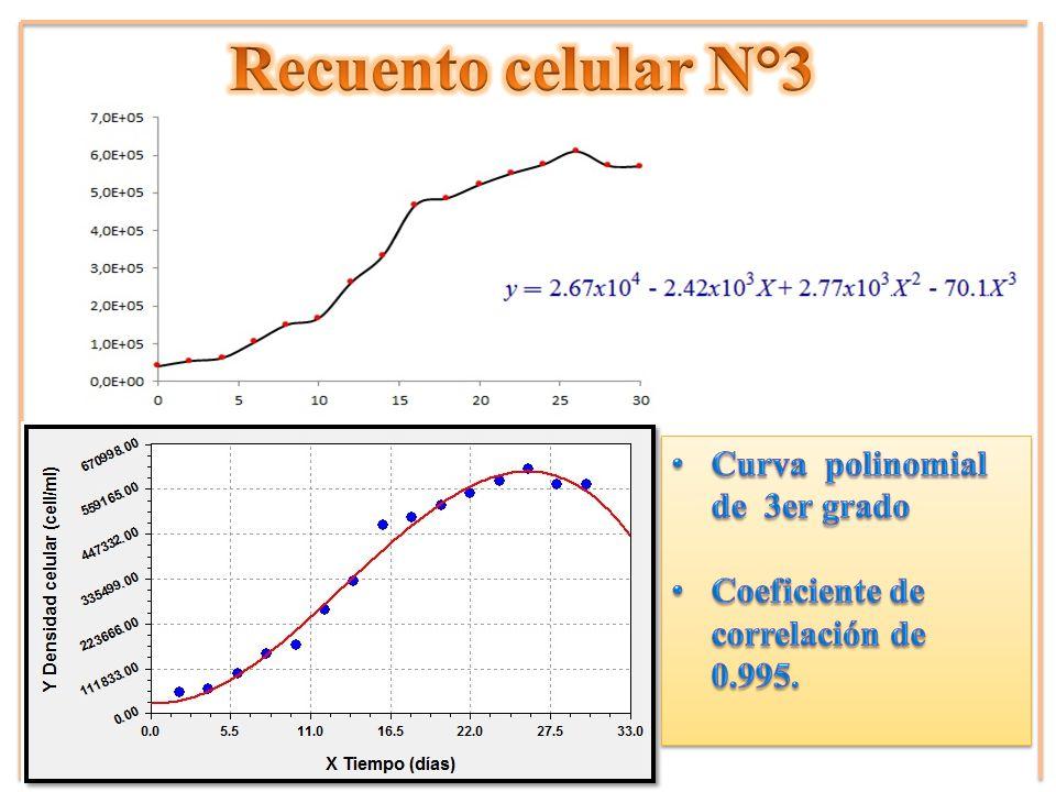 Recuento celular N°3 Curva polinomial de 3er grado