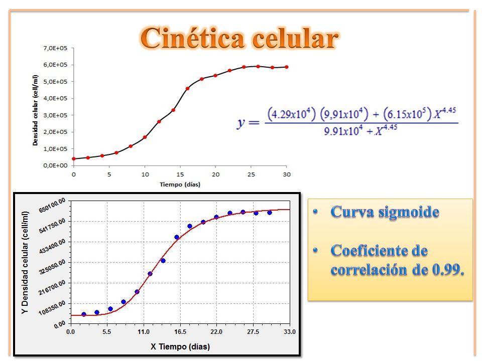 Cinética celular Curva sigmoide Coeficiente de correlación de 0.99.