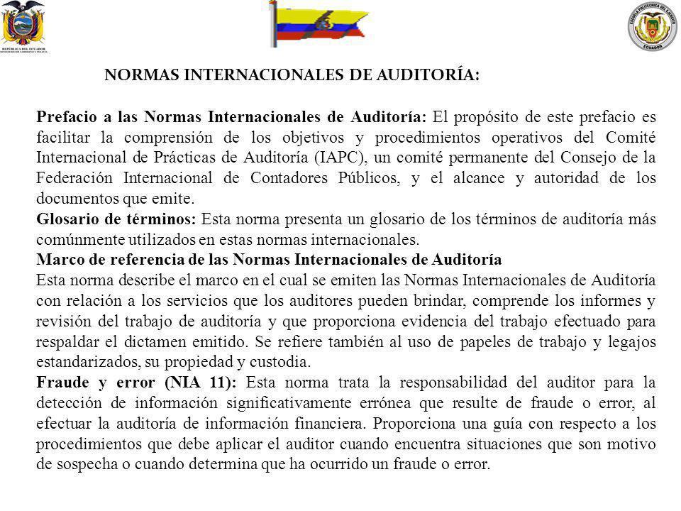 NORMAS INTERNACIONALES DE AUDITORÍA: