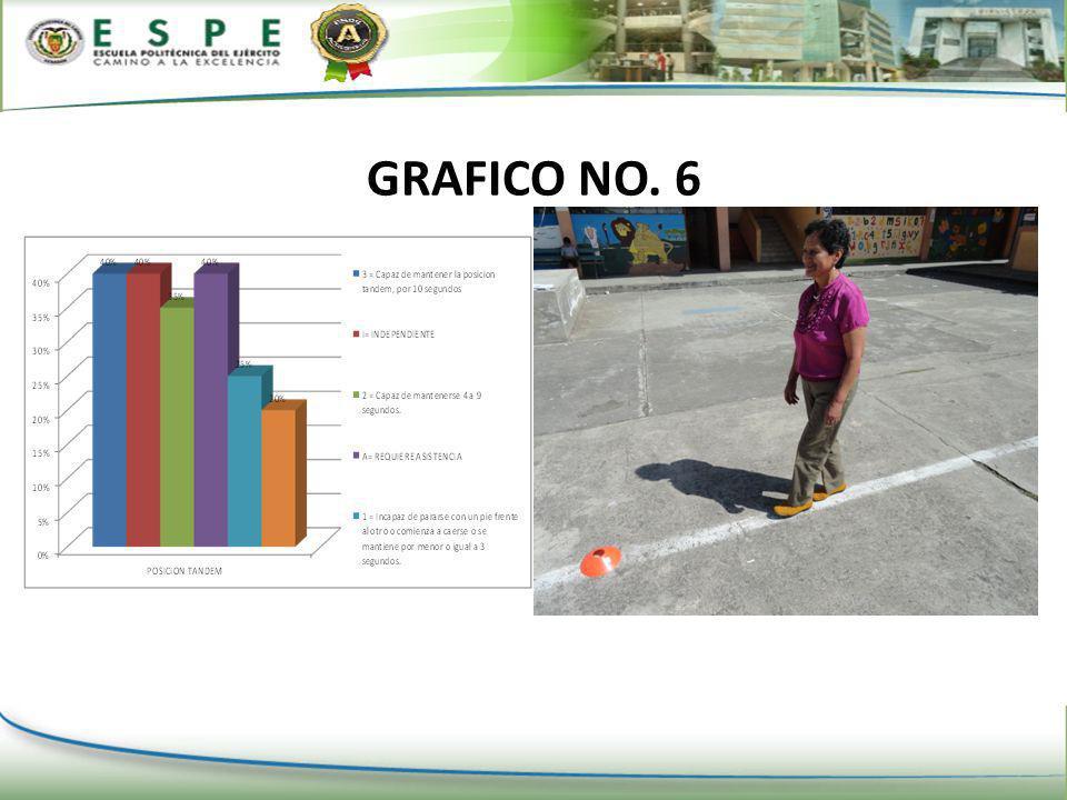 GRAFICO NO. 6