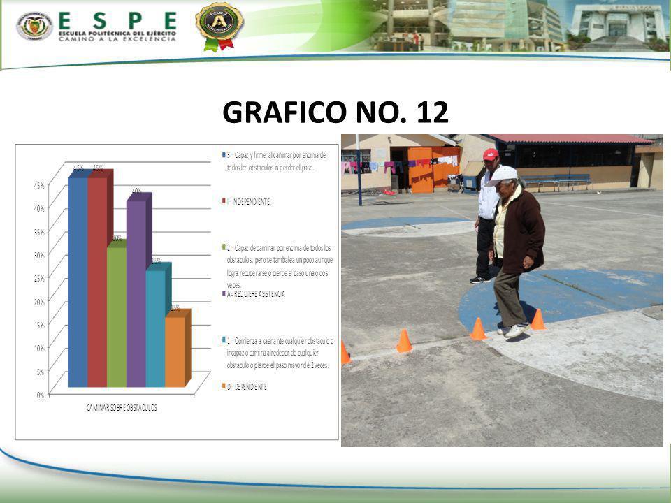 GRAFICO NO. 12