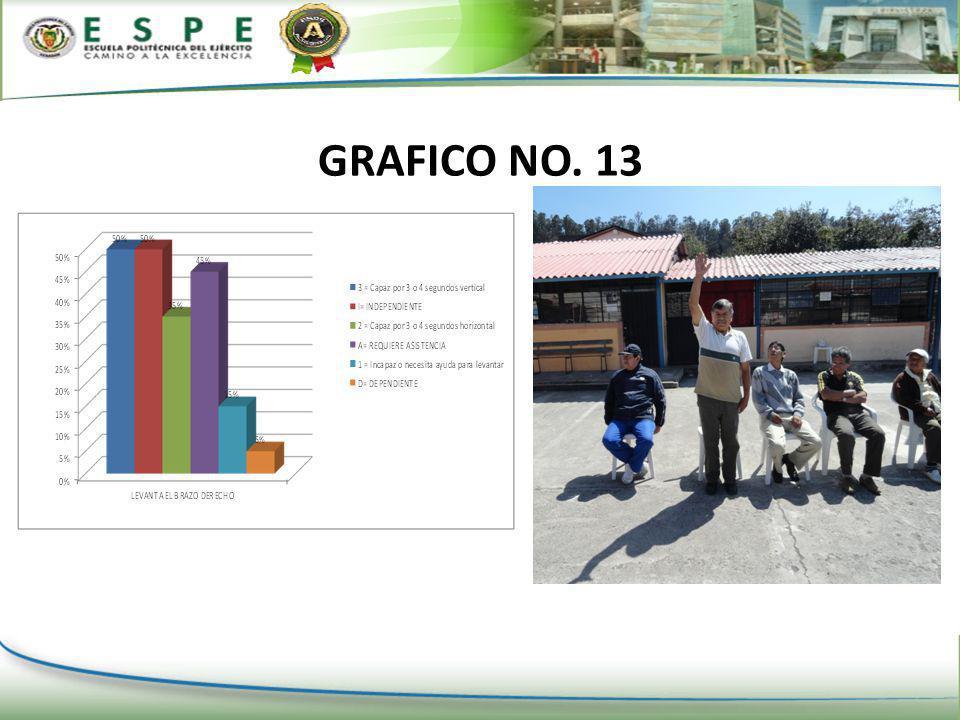 GRAFICO NO. 13