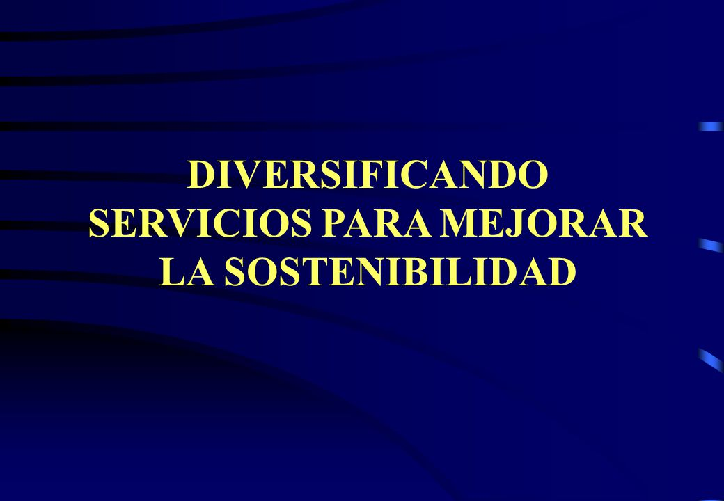 DIVERSIFICANDO SERVICIOS PARA MEJORAR LA SOSTENIBILIDAD
