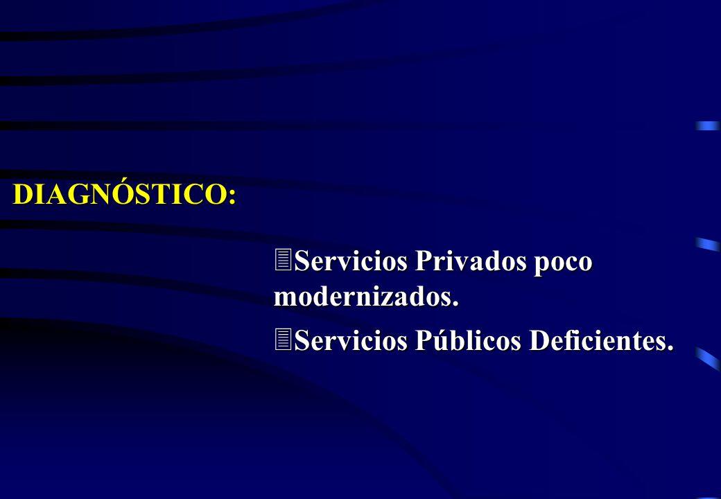 DIAGNÓSTICO: Servicios Privados poco modernizados. Servicios Públicos Deficientes.