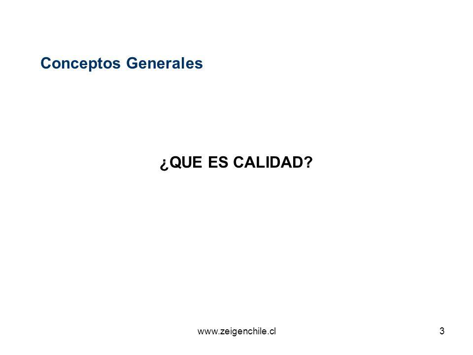 Conceptos Generales ¿QUE ES CALIDAD www.zeigenchile.cl