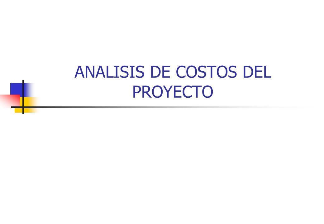 ANALISIS DE COSTOS DEL PROYECTO