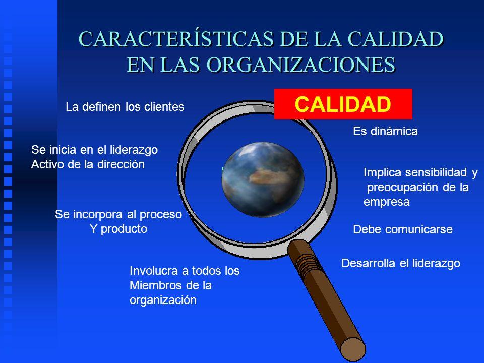 CARACTERÍSTICAS DE LA CALIDAD EN LAS ORGANIZACIONES