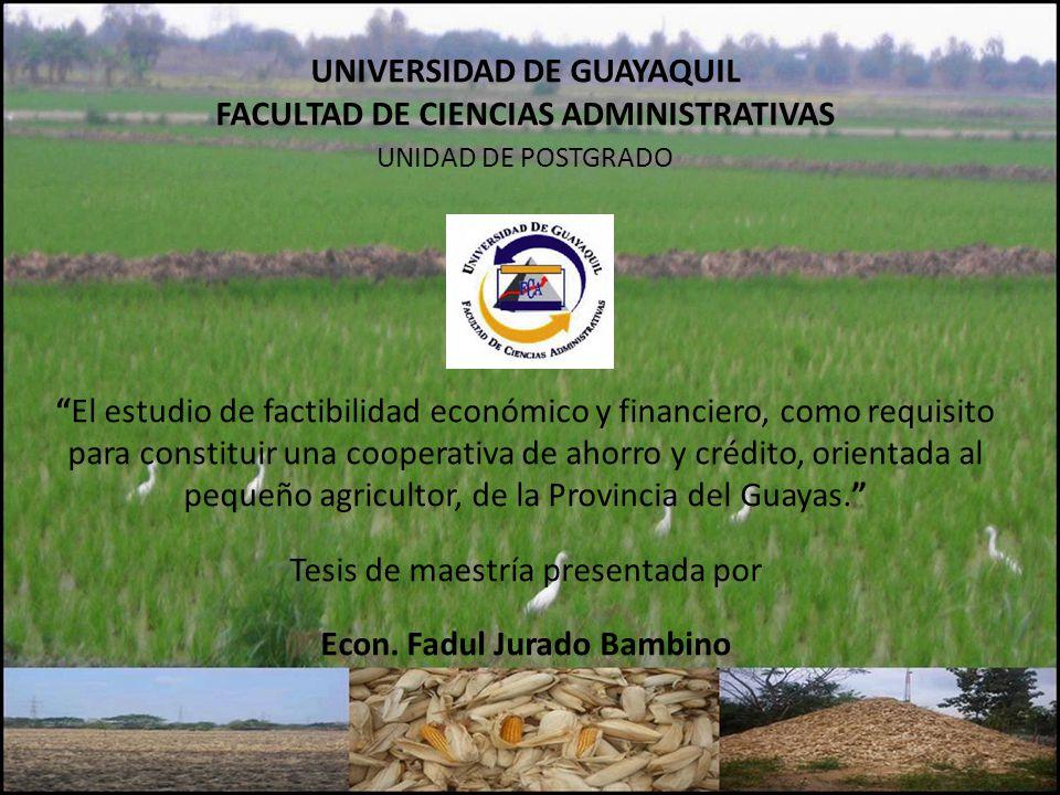 UNIVERSIDAD DE GUAYAQUIL Econ. Fadul Jurado Bambino
