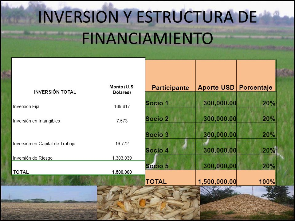 INVERSION Y ESTRUCTURA DE FINANCIAMIENTO