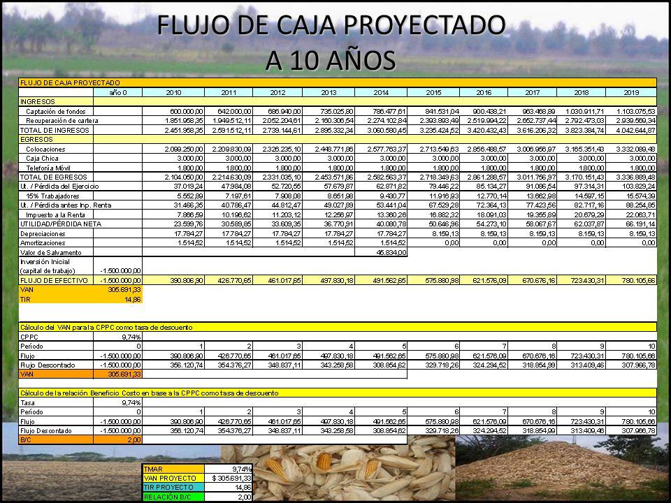 FLUJO DE CAJA PROYECTADO A 10 AÑOS