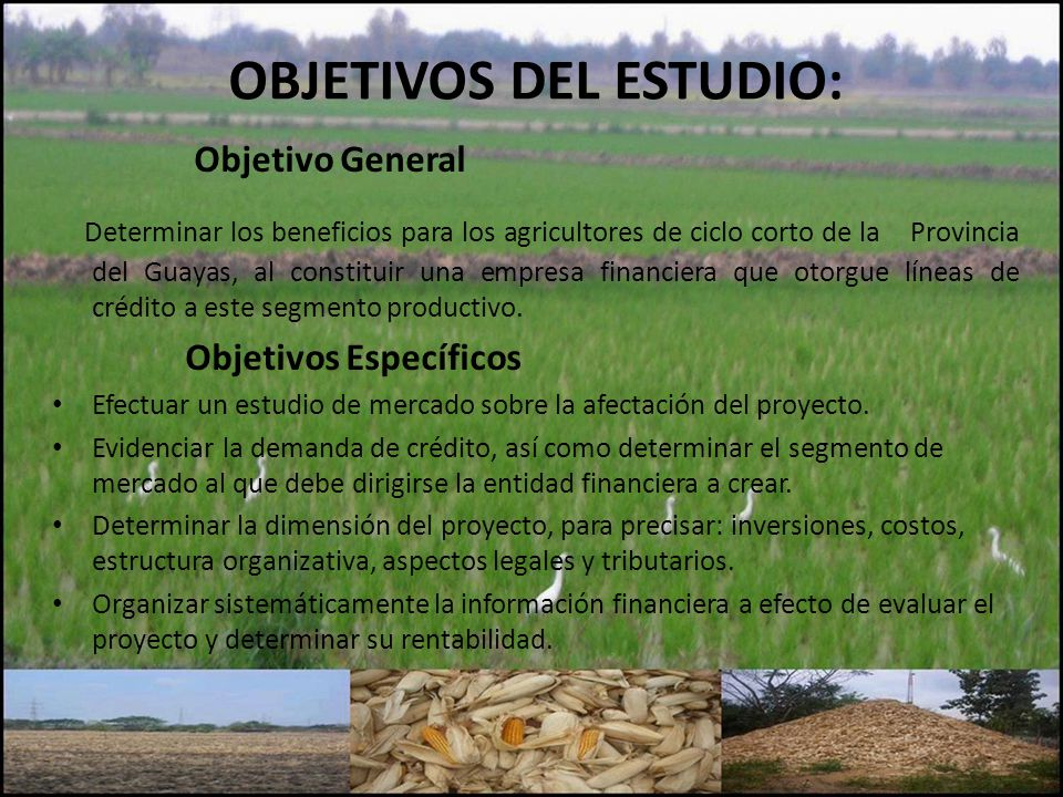 OBJETIVOS DEL ESTUDIO: