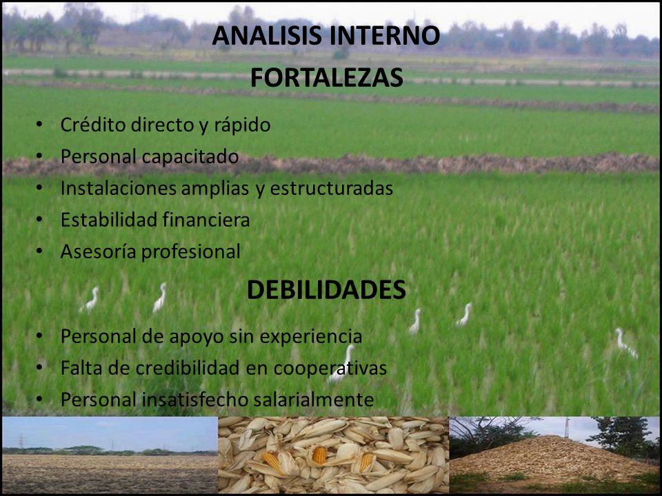 ANALISIS INTERNO FORTALEZAS DEBILIDADES