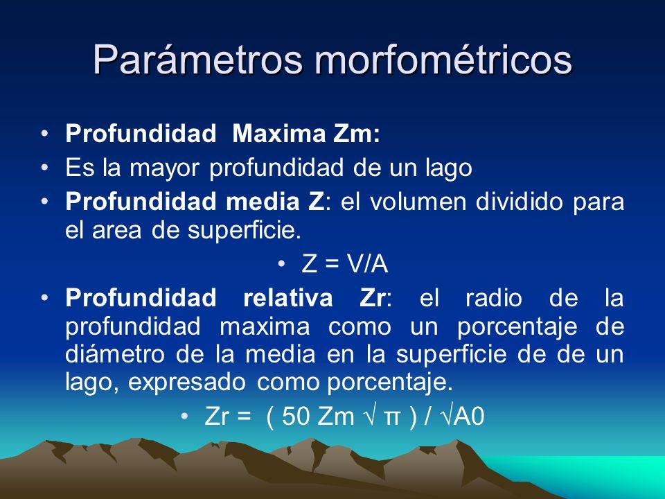 Parámetros morfométricos