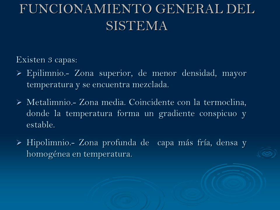 FUNCIONAMIENTO GENERAL DEL SISTEMA