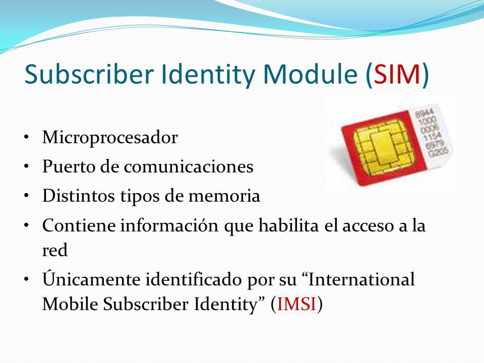 Subscriber Identity Module (SIM)