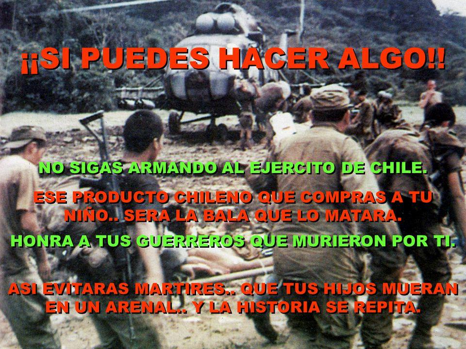 ¡¡SI PUEDES HACER ALGO!! NO SIGAS ARMANDO AL EJERCITO DE CHILE.