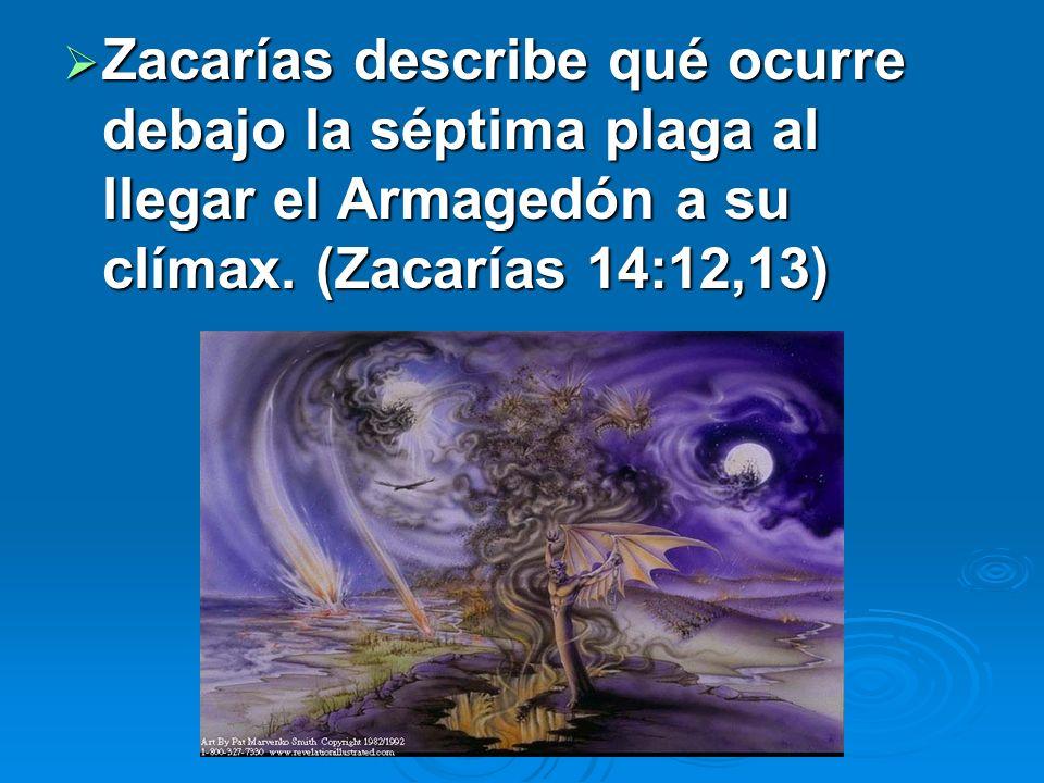 Zacarías describe qué ocurre debajo la séptima plaga al llegar el Armagedón a su clímax.